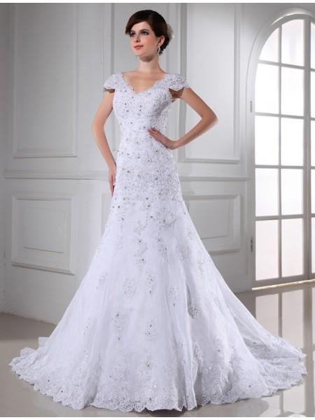 A-Line/Princess Beading Applique Organza Sleeveless Chapel Train V-neck Wedding Dresses